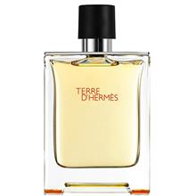 Hermes Terre DHermes Eau De Toilette For Men 100ml